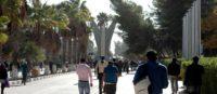 التعليم العالي يقر السياسة العامة لقبول الطلبة الوافدين في الجامعات الأردنية