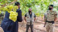 الملك: التحول للزراعات ذات القيمة المضافة واستهداف الأسواق التصديرية